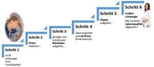 6-schritte1