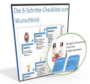 ecover_6-schritte-checkliste-website