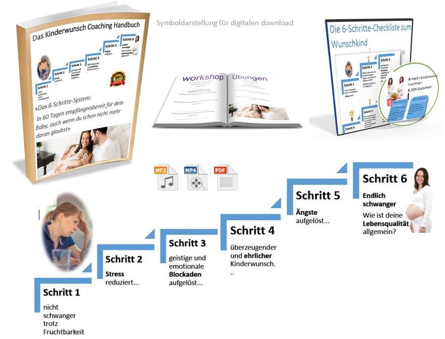 symbolbild_6-schritte-system